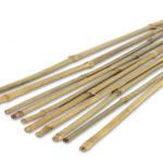 Tasseau de bambou soutien du Ska'h